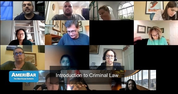 Criminal Law MBE Introduction